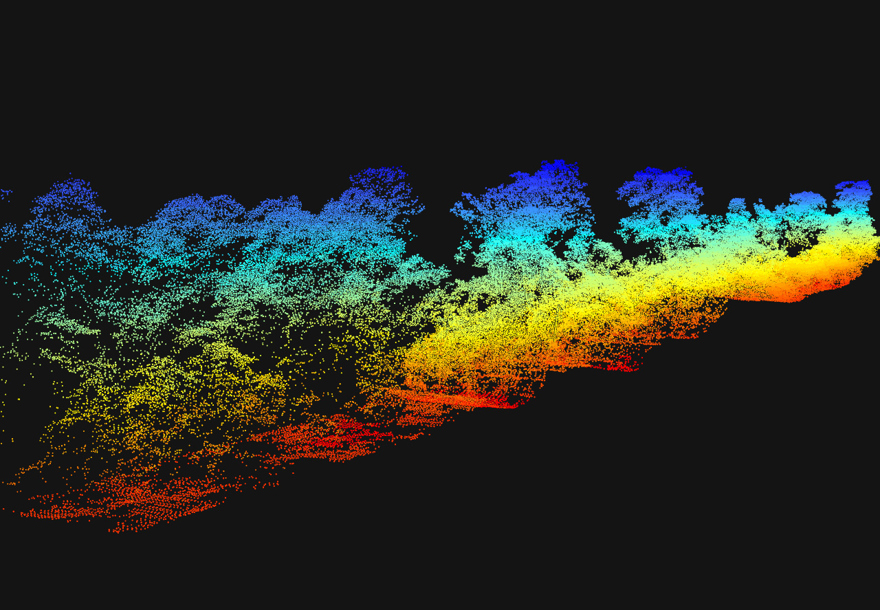 Swath of lidar returns with trees